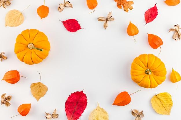 Zucche autunnali, fiori d'arancio essiccati e foglie