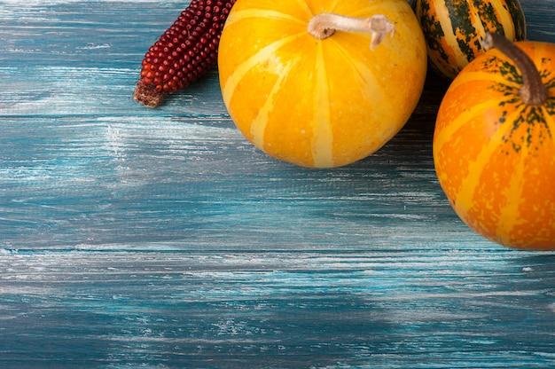 Zucche di autunno sul blu misero