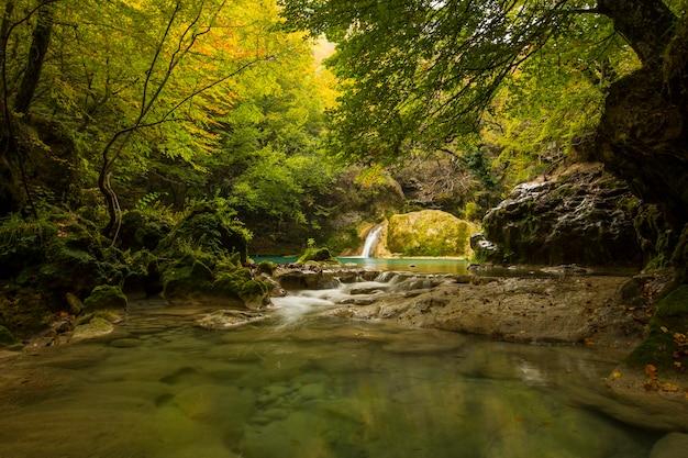 Scena autunnale nel fiume nacedero de urederra, navarra, spagna settentrionale
