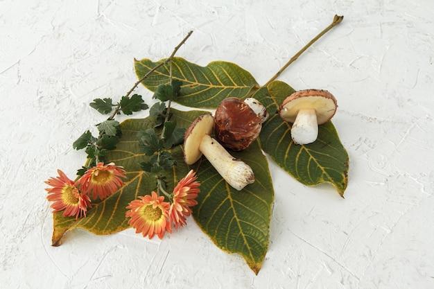 Natura morta autunnale con funghi, foglie verdi e fiori.