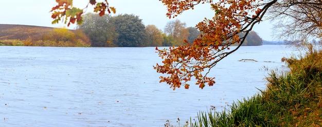 Vista autunnale con un ramo di quercia in riva al fiume, panorama