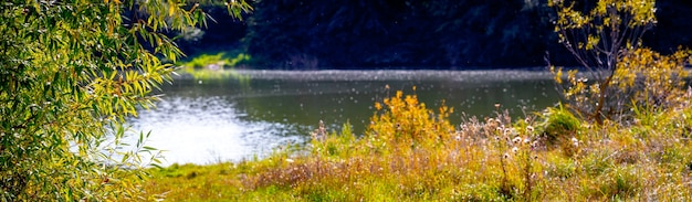 Vista autunnale con fiume e vegetazione sulla riva del fiume con tempo soleggiato