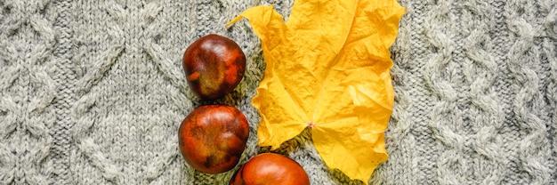 Foglia d'acero secca gialla autunnale e castagne rosse sullo sfondo di un maglione lavorato a maglia grigio accogliente. concetto di caduta. striscione