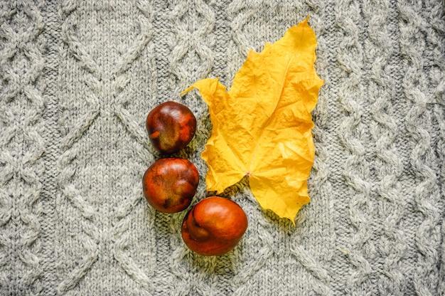 Foglia d'acero secca gialla autunnale e castagne rosse sullo sfondo di un maglione lavorato a maglia grigio accogliente. concetto di caduta