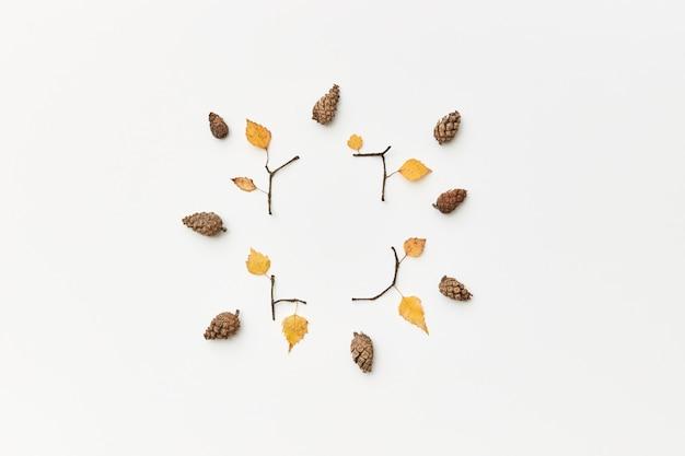 Composizione autunnale con coni, ramoscelli e foglie gialle isolate su bianco, flatlay