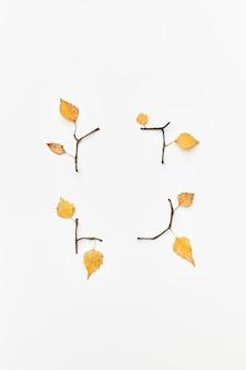 Composizione autunnale con ramoscelli e foglie gialle isolate su bianco, flatlay