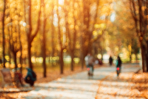 Parco autunnale. bokeh colorato luminoso.