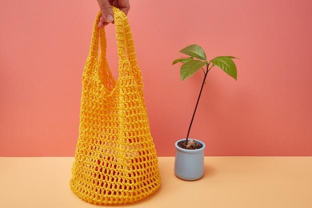 Germoglio dell'avocado e borsa di corda su un angolo colorato con lo spazio della copia
