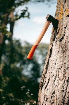 Ascia con un manico di legno rosso bloccato in un albero