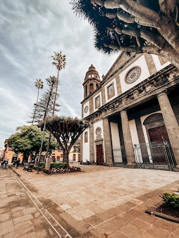 Ayuntamiento de anaga con palmeras