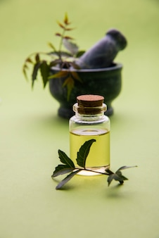 Erbe ayurvediche anti batteriche neem o lilla o azadirachta indica con olio in bottiglia con malta, isolate su sfondo semplice, messa a fuoco selettiva