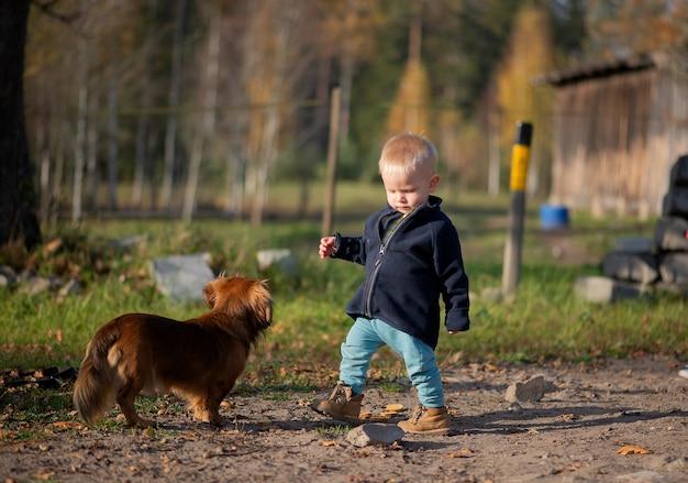 Neonato bambino bambino e simpatico cane all'aperto