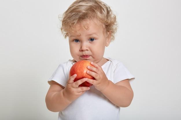 Neonato che tiene e mangia mela rossa, posa isolato su uno spazio bianco, affascinante bambino maschio con capelli ricci biondi che guarda lontano