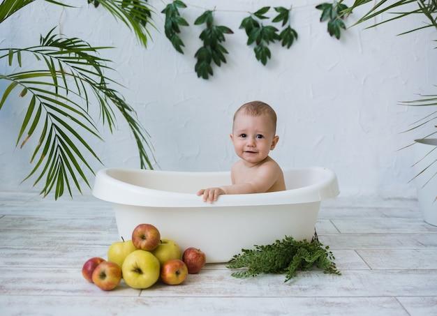 Un bambino con gli occhi marroni si siede in un bagnetto con mele su uno sfondo bianco con piante