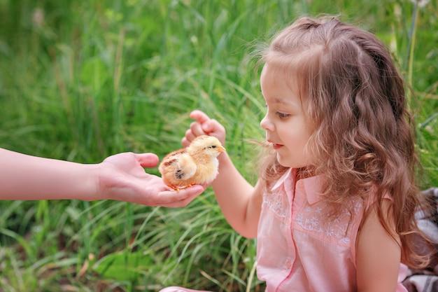 Neonata e pollo sulla molla dell'erba