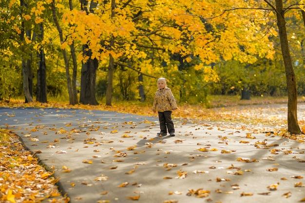 Bambina che cammina nel parco autunnale in una giornata di sole.