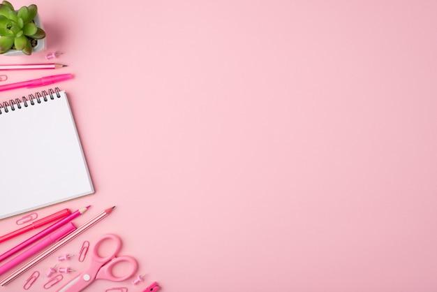Torna al concetto di scuola. in alto sopra la foto vista dall'alto di cancelleria succulenta e colorata isolata su sfondo rosa pastello con copyspace