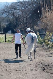 Vista posteriore di un uomo calvo cowboy che cammina con il suo cavallo bianco
