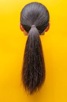 Vista posteriore coda di cavallo capelli danneggiati isolati su sfondo giallo capelli secchi e fragili capelli neri lunghi