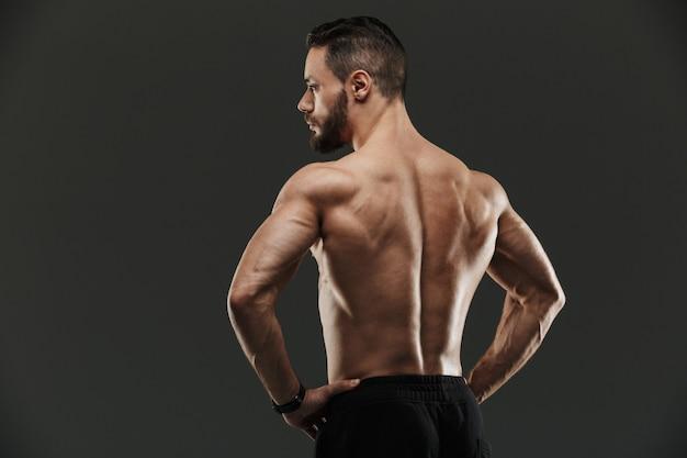 Ritratto di vista posteriore di una posa muscolare del culturista di misura