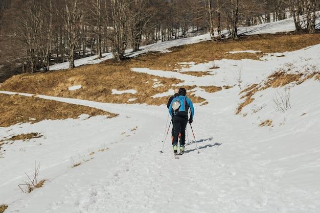 Vista posteriore di due sciatori che sciano sulla montagna innevata vicino alla foresta