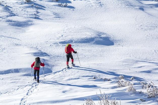 Vista posteriore di due escursionisti turistici con zaini e bastoncini da trekking ascendente pendio di montagna innevato il giorno di inverno soleggiato sulla parete bianca dello spazio della copia della neve. sport estremi, ricreazione, vacanze invernali.