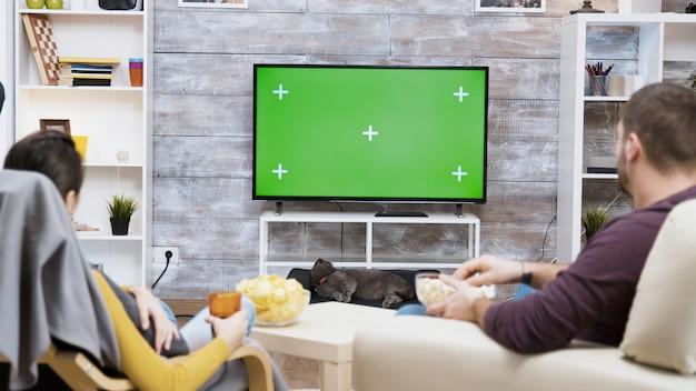 Vista posteriore di una giovane coppia seduta su una sedia che mangia popcorn, guarda la tv con lo schermo verde e il loro gatto che le lecca la pelliccia.
