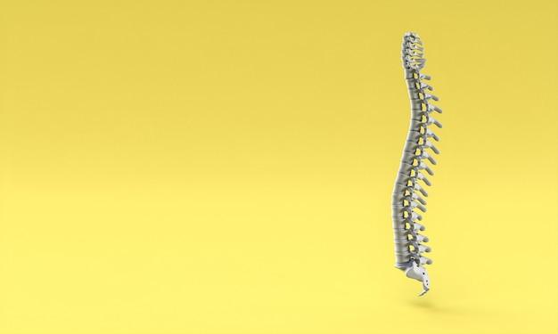 Spina dorsale su sfondo giallo. rendering 3d.