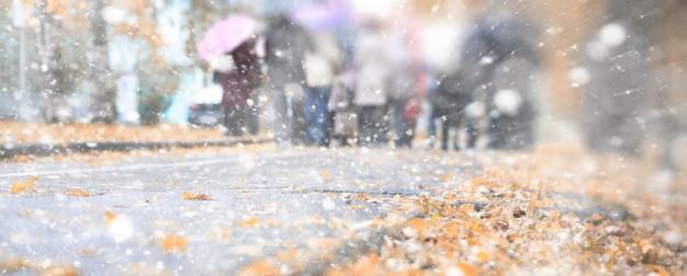 Parco autunnale di sfondo nei giorni della prima neve