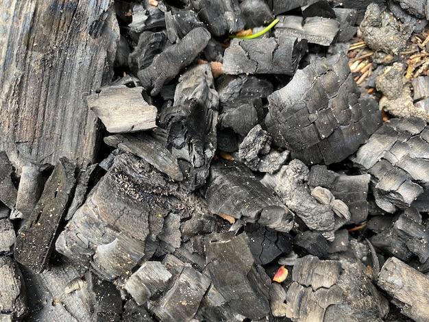 Sfondo di carbone di betulla nero sparso per terra