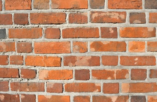 Sullo sfondo di un muro di mattoni texture
