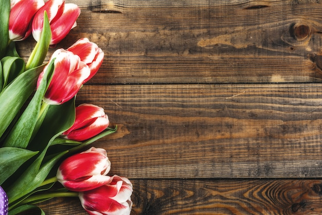 Sfondo per congratulazioni, biglietti di auguri. fiori freschi dei tulipani della molla, su una vista superiore del fondo di legno