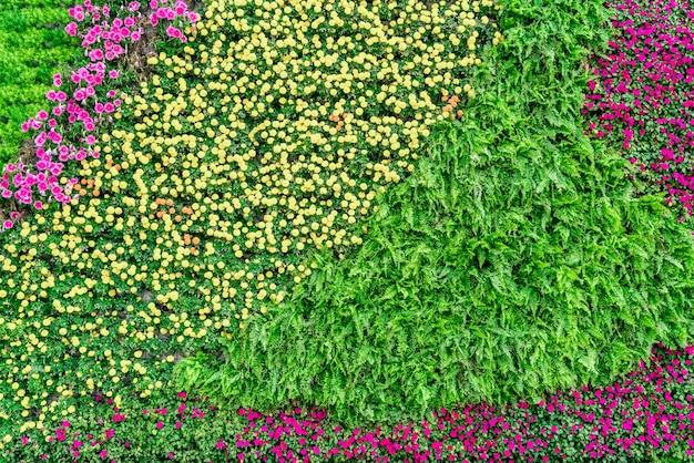 Materiale di fondo della parete di fiori e piante