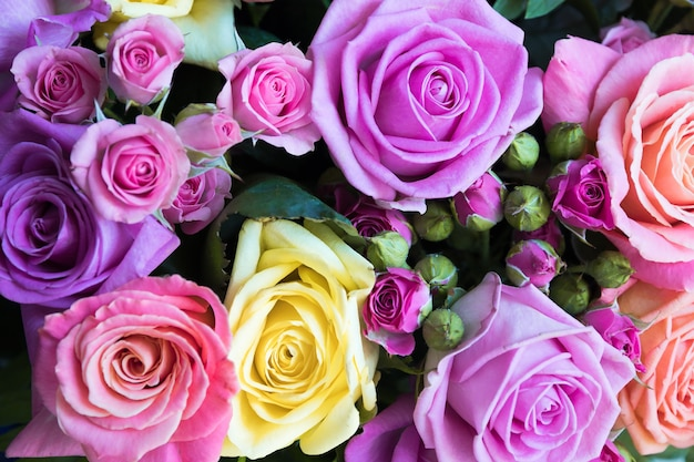 Sfondo di rose multicolori per il matrimonio o il giorno di san vadentin e la festa della mamma