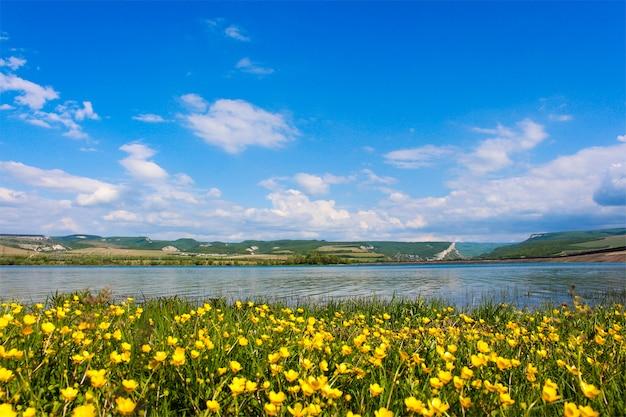 Natura di fondo: campo di fiori gialli, lago e montagne.