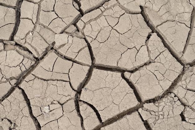 Sfondo o trama di terra secca sporca grigia incrinata o terra