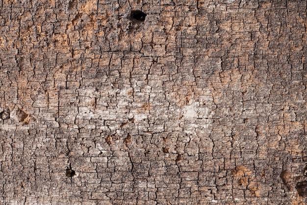 Tavola di legno vecchia di texture di sfondo.