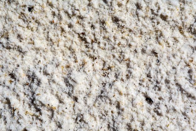 Fondo, struttura - salgemma solidificato sulla riva di uno stagno di sale