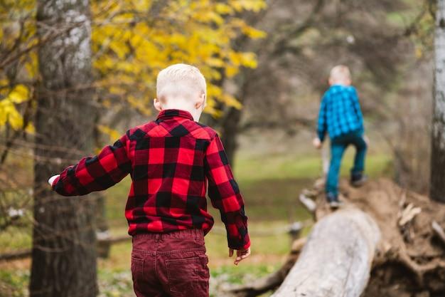 Schiene di fratelli gemelli maschi che si arrampicano e si equilibrano su un vecchio tronco di legno e radici nella foresta autunnale, tempo libero attivo, avventure dell'infanzia