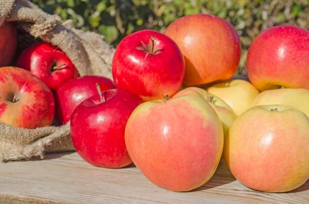Sacchetto di mele