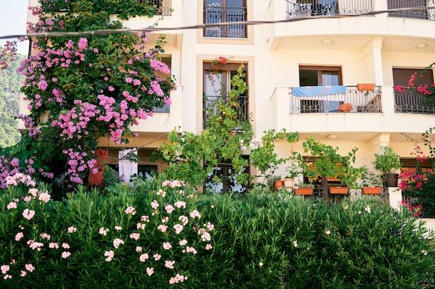 Balconi di un edificio residenziale con vegetazione in box e un'aiuola fiorita nel