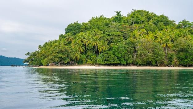 Capanne di bambù sotto le palme di una famiglia sull'isola di gam, papua occidentale, raja ampat. indonesia.