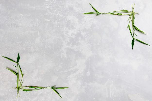 Bordo di foglie di bambù con sfondo di cemento bianco