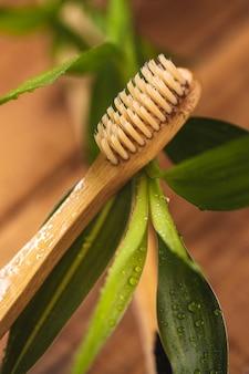 Pianta di bambù e spazzolino ecologico sulla superficie in legno