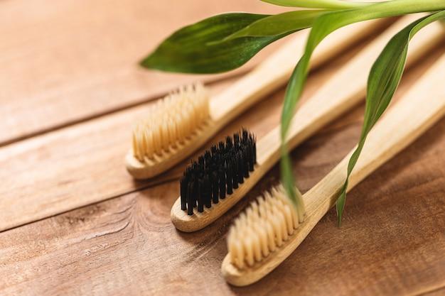 Pianta di bambù e spazzolini da denti ecologici sulla superficie in legno