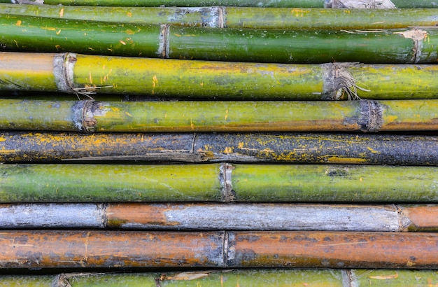 Sfondo texture bambù in orizzontale