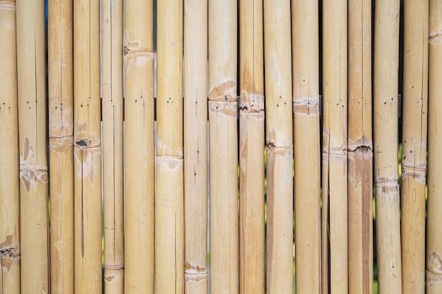 Muro di bambù