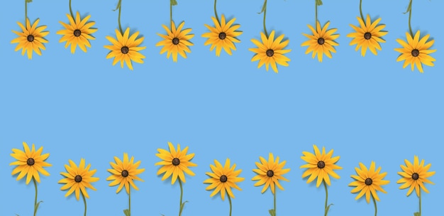 Un banner composto da due file di fiori estivi luminosi su sfondo blu. una cartolina estiva.