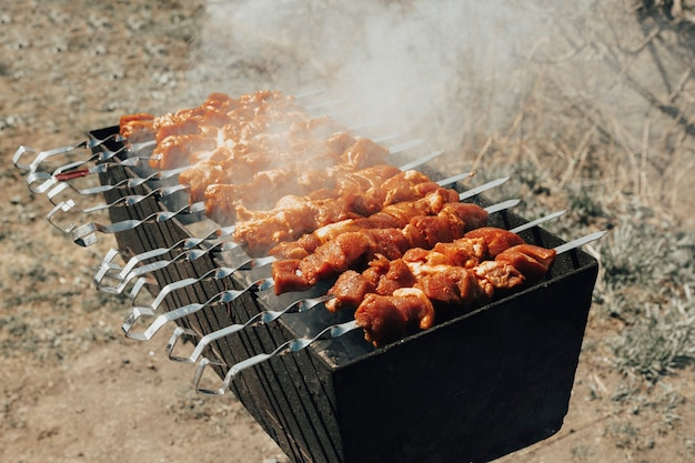 Barbecue su spiedini alla griglia