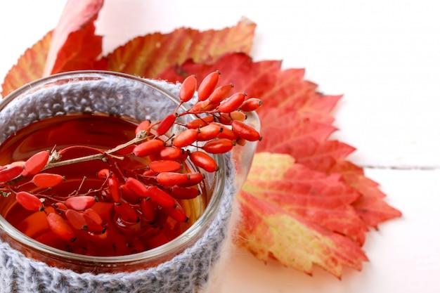Tè al crespino con una tazza lavorata a maglia isolata